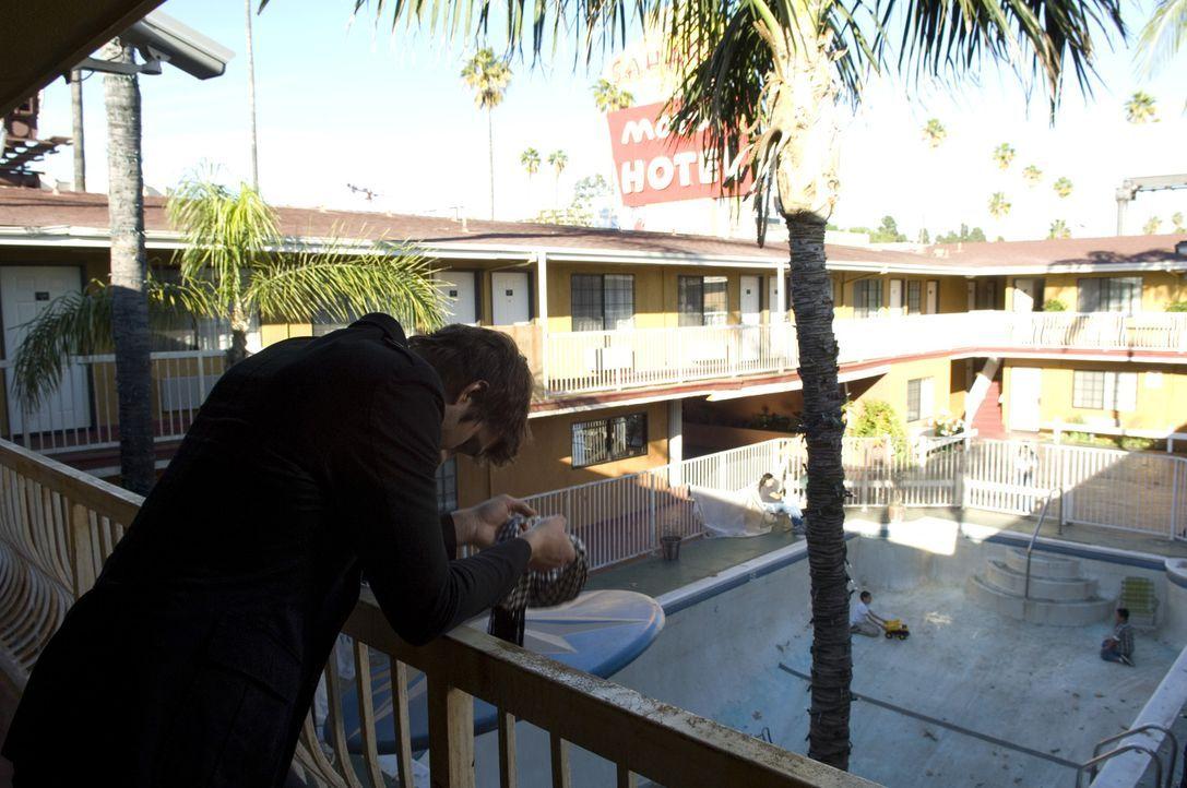 Nach und nach gleitet ihm sein Leben aus den Händen: Nikki (Ashton Kutcher) ... - Bildquelle: 2008 by EASY A Inc. All Rights Reserved