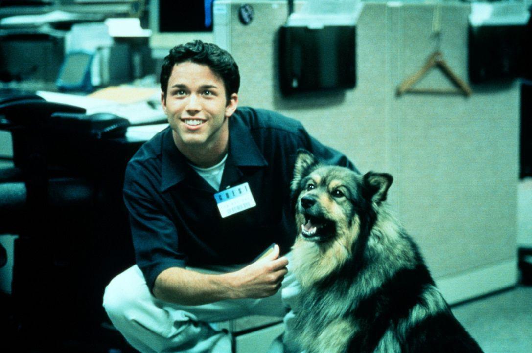 Andrew (Pete Jackson) und sein treuer Hund geraten in ein gefährliches Abenteuer ... - Bildquelle: Kushner-Locke Company