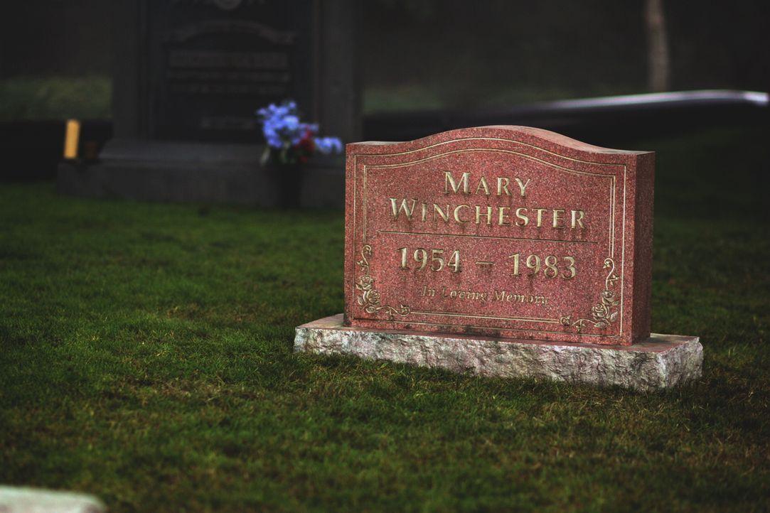 Die Brüder besuchen das Grab ihrer Mutter, weil sie dort etwas von ihrem Vater vergraben wollen ... - Bildquelle: Warner Bros. Television
