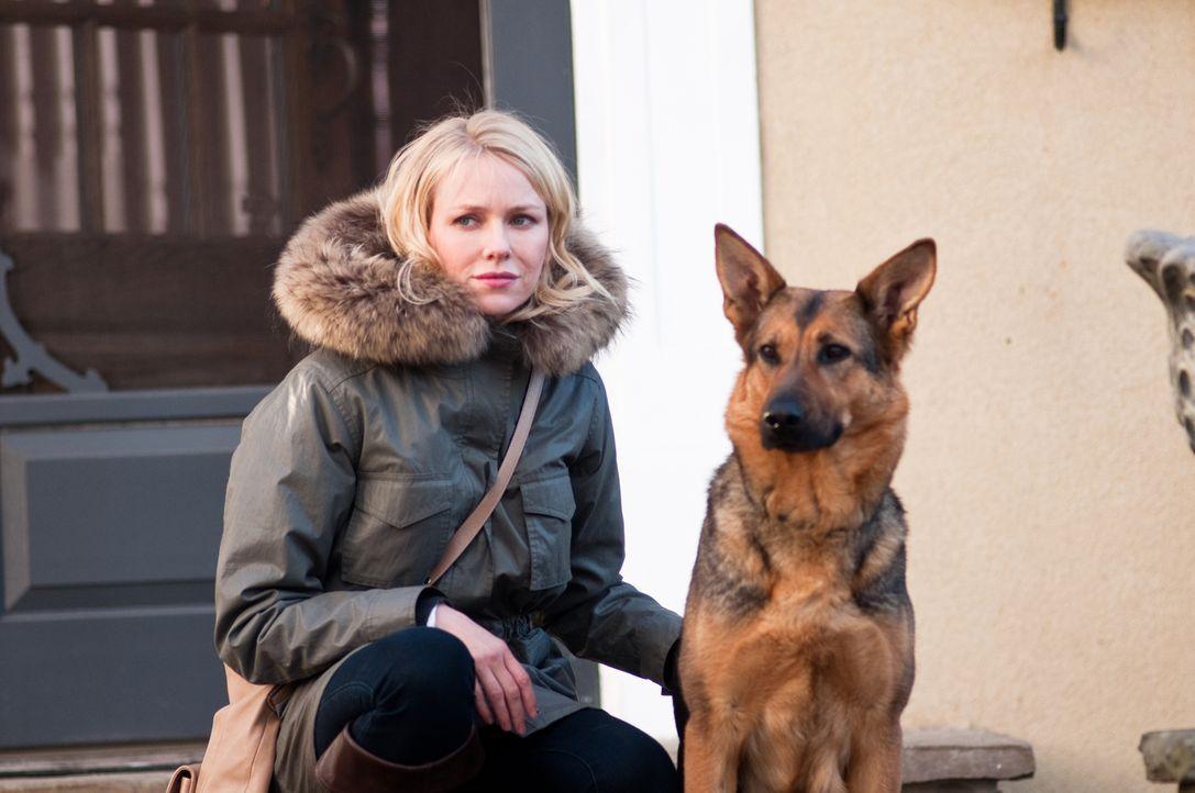 Hat Ann (Naomi Watts) etwas mit den schrecklichen Morden von vor fünf Jahren zu tun? - Bildquelle: 2011 Universal Studios