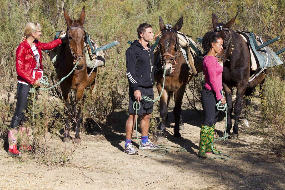 Unter der Anleitung von Dr. Christine Theiss (l.) und den anderen Trainern versuchen die Kandidaten, in 10 Wochen so viel Gewicht wie möglich abzun... - Bildquelle: Enrique Cano SAT.1