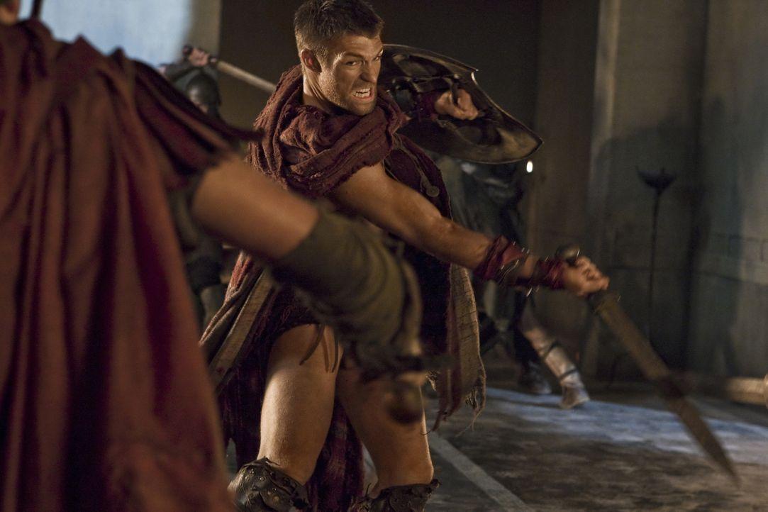 Zeigt den Römern, wo es langgeht: Spartacus (Liam McIntyre) ... - Bildquelle: 2011 Starz Entertainment, LLC. All rights reserved.