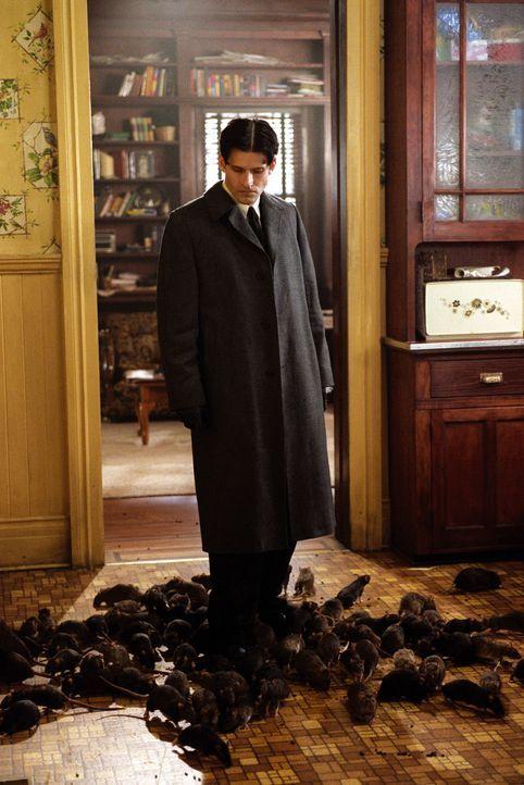 Eines Tages schließt Willard (Crispin Glover) einen Pakt mit einer Schar hochintelligenter Ratten ... - Bildquelle: Warner Bros. GmbH