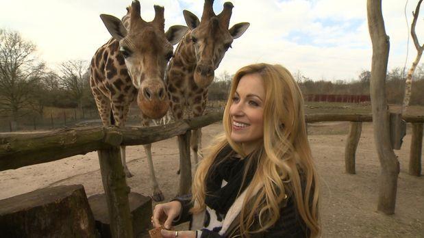 Die wunderbare Welt der Tierbabys - Andrea Kaiser besucht die ZOOM Erlebniswe...