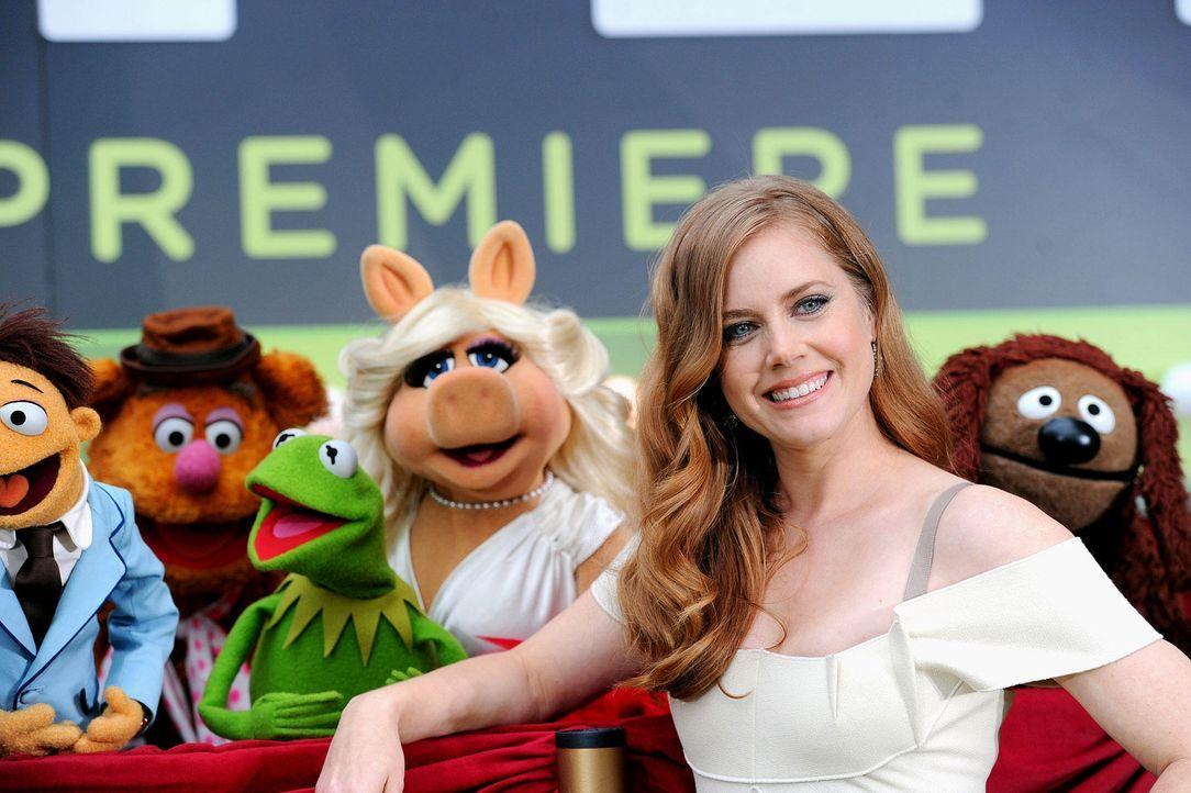 muppets-premiere-la-amy-adams-wireimagejpg 1900 x 1265 - Bildquelle: WireImage