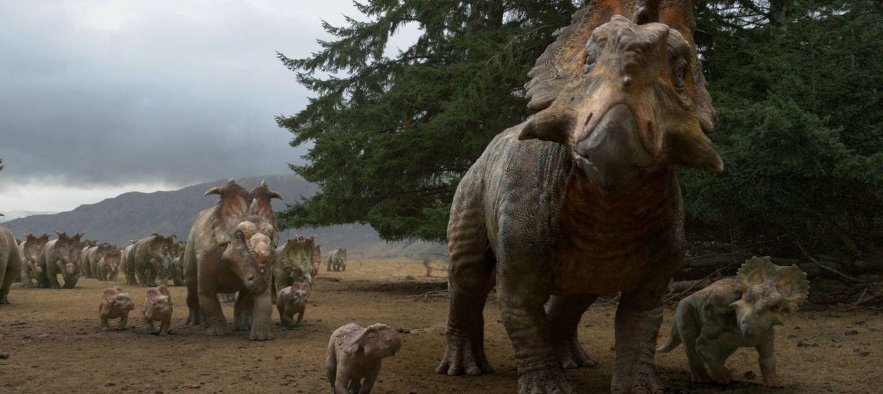 Patchis Vater Kolosso (M.) führt die ganze Herde der Pachyrhinosauren an und Patchis Bruder Bruto (r.) will eines Tages genau dasselbe tun, doch dan... - Bildquelle: 2013 Constantin Film Verleih GmbH.