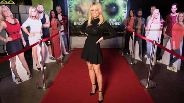 berraschung f r die bewohner pamela anderson besucht big brother. Black Bedroom Furniture Sets. Home Design Ideas