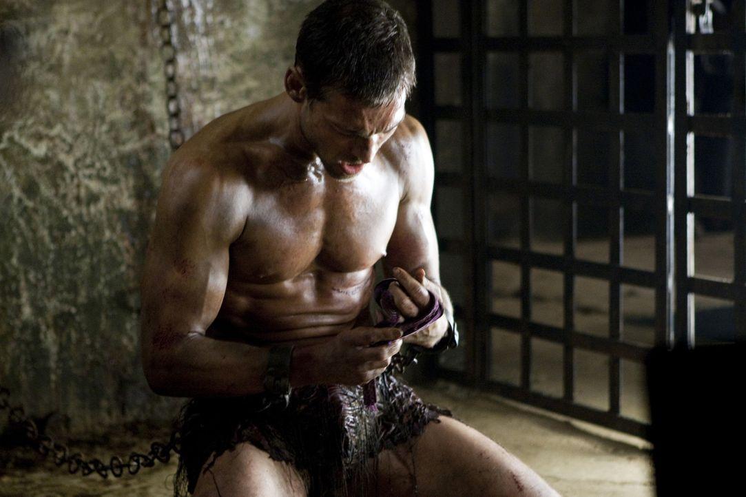 Die ersten Tage in der Gladiatorenschule sind die reinste Hölle, aber Spartakus (Andy Whitfield) lässt sich nicht unterkriegen. Er arbeitet nur au... - Bildquelle: 2010 Starz Entertainment, LLC