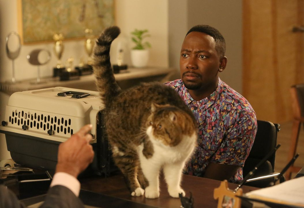 Während Winston (Lamorne Morris) seine Katze ganz groß rausbringen will, kommt es zwischen Jess und Nick zu einem Gespräch unerwarteten Gespräch ...... - Bildquelle: Patrick McElhenney 2016 Fox and its related entities.  All rights reserved.