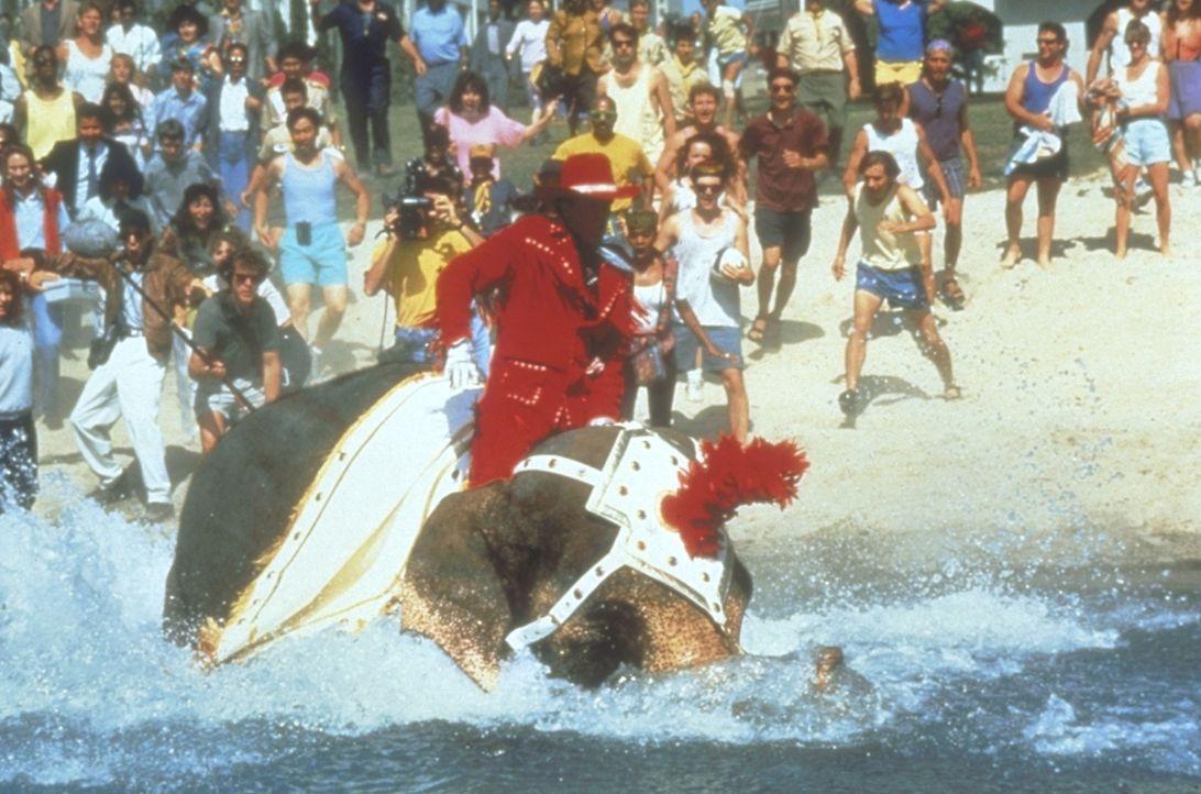 Mit spektakulären Werbespots in aller Munde: Autohändler Hal Jackson (Ted Danson, M.) ... - Bildquelle: Warner Bros.