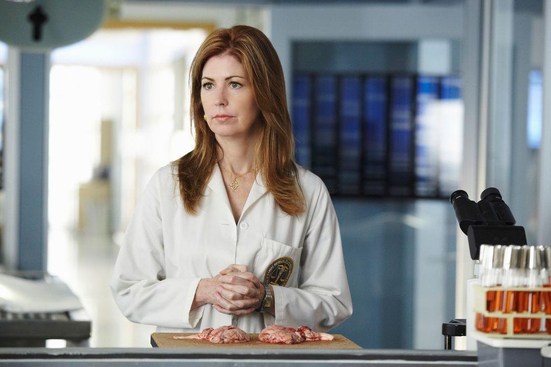 In einem Hotelzimmer wird die Leiche einer jungen Frau gefunden. Während der Obduktion stellt Megan (Dana Delany) fest, dass sie die junge Frau kenn... - Bildquelle: ABC Studios
