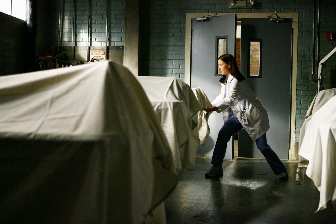 Als Lexie (Chyler Leigh) herausfindet, dass die Leichen im Leichenschauhaus oftmals gespendet werden, damit Studenten an ihnen üben können, fackel... - Bildquelle: Touchstone Television