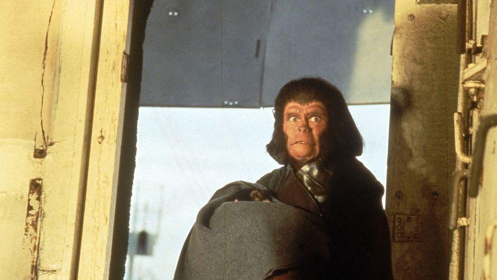 Flucht vom Planet der Affen - Bildquelle: 1971 Twentieth Century Fox Film Corporation.