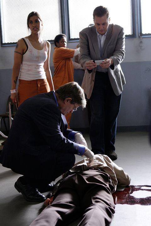 Ein Gefängniswärter wurde umgebracht. McGee (Sean Murray, r.) und Ducky (David McCallum, vorne l.) untersuchen die Leiche, um den Mörder ausfindig z... - Bildquelle: CBS Television