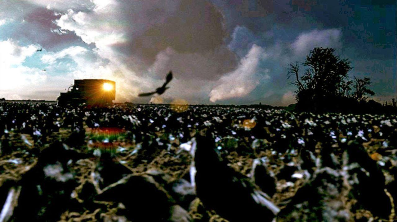 Kann die Bedrohung durch die Krähen noch aufgehalten werden ...? - Bildquelle: TVT Sat.1