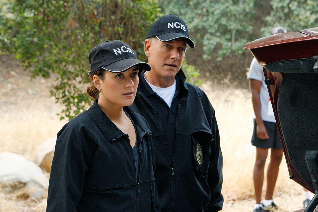 Werden Gibbs (Mark Harmon, r.), Ziva (Cote de Pablo, l.) und das restlichte Team den Mörder des Arztes, der auf dem Navy-Gelände tot aufgefunden wur... - Bildquelle: CBS Television