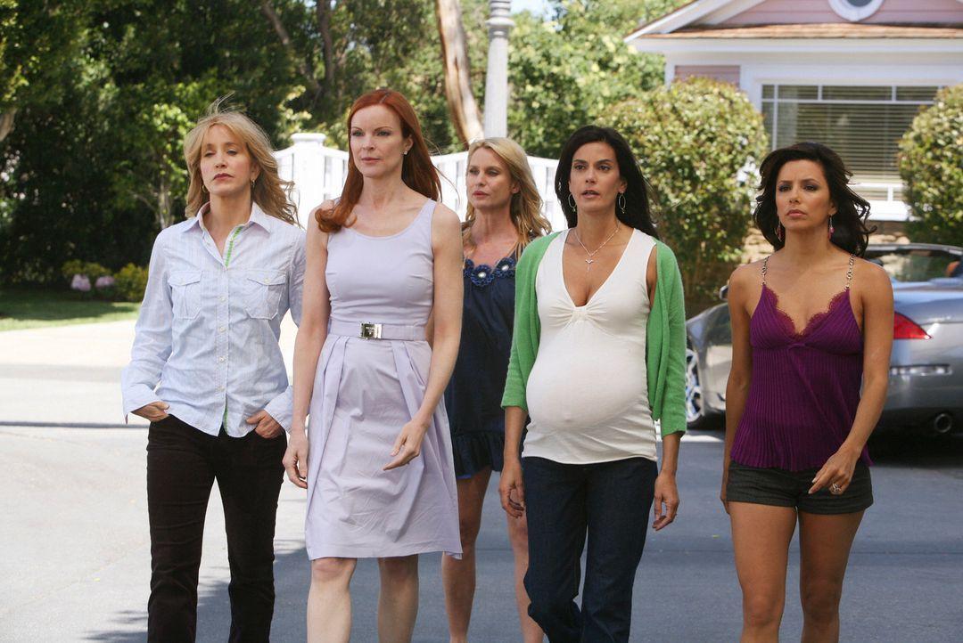 Bree berichtet ihren Freundinnen alles über den Vorfall mit Edie (Nicolette Sheridan, M.) - daraufhin eröffnen Lynette (Felicity Huffman, l.), Susan... - Bildquelle: ABC Studios