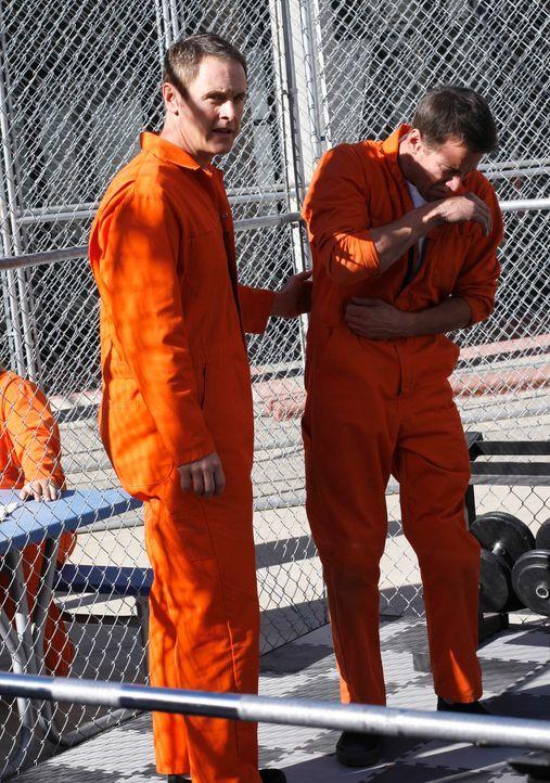 Paul (Mark Moses, l.) bezahlt zwei Mithäftlinge, damit sie Mike (James Denton, r.) auf dem Hof des Gefängnisses angreifen, so dass er eingreifen kan... - Bildquelle: 2005 Touchstone Television  All Rights Reserved