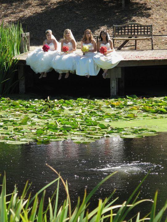 Jede der vier Bräute glaubt, die perfekte Hochzeit organisiert zu haben, doch wer wird auch die Konkurrenz davon überzeugen können: Carrie (l.), Tan... - Bildquelle: Richard Vagg DCL