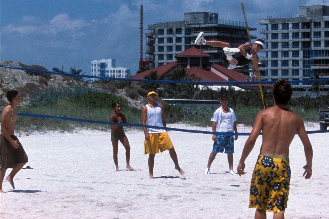 Steve-O, der ehemalige Zirkus-Clown, macht als Stabhochspringer einen Strand unsicher und stellt seinen Allerwertesten als Startrampe für Feuerwerk... - Bildquelle: Paramount Pictures