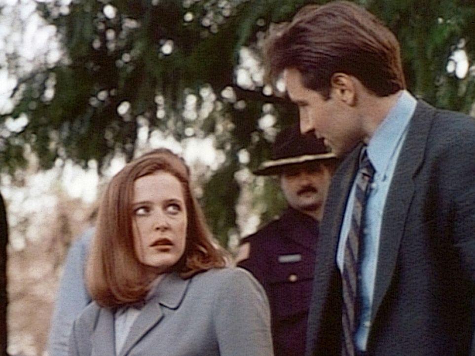 Die FBI-Agentin Scully (Gillian Anderson, l.) steht der Theorie ihres Partners Mulder (David Duchovny, r.), dass vier Jugendliche von außerirdischen... - Bildquelle: TM +   2000 Twentieth Century Fox Film Corporation. All Rights Reserved.