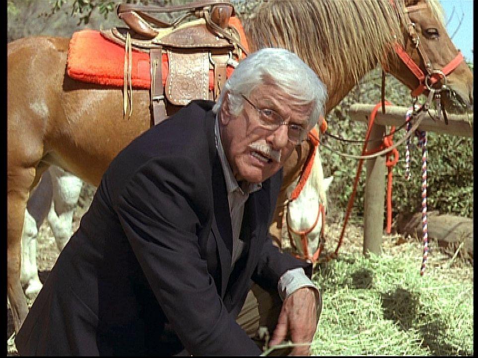 Entsetzt kniet Mark (Dick Van Dyke) neben der Leiche seines alten Freundes Chester, der ermordet wurde. - Bildquelle: Viacom