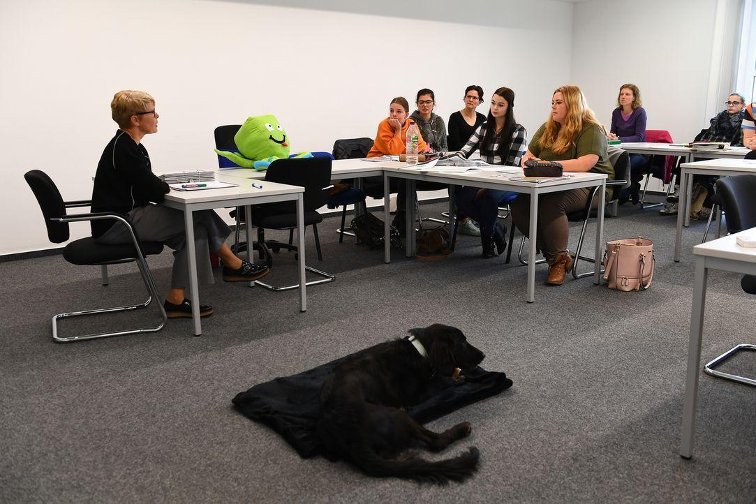 Da Silvia (l.) in ihrem Berufsalltag viel mit anderen Menschen zu tun hat, ist es wichtig, einen Hund zu finden, der ruhig auf fremde Menschen reagi... - Bildquelle: Willi Weber SAT.1