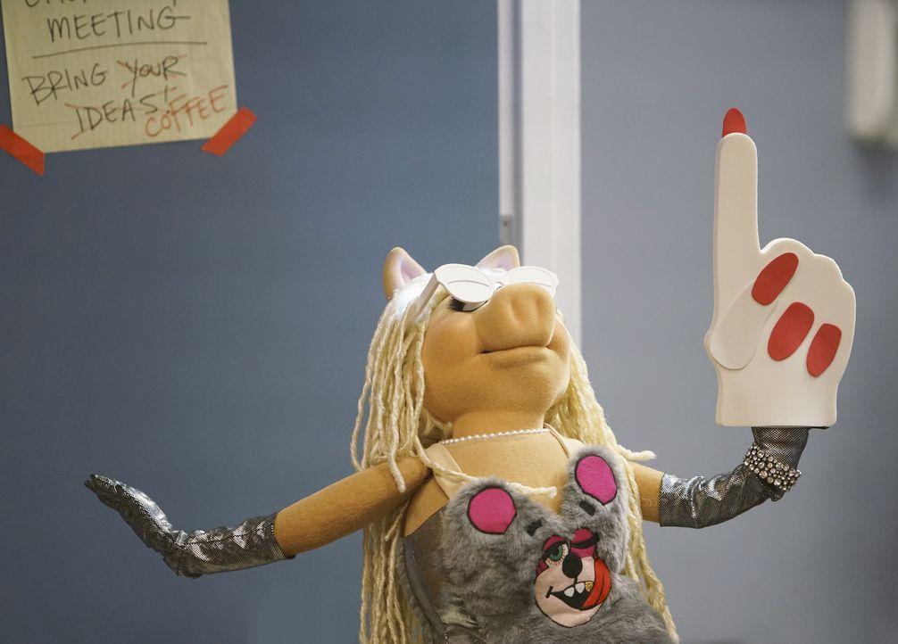 Präsentiert ihr neues Ich, nachdem Pizza, die Show auffrischen möchte: Miss Piggy ... - Bildquelle: Andrea McCallin ABC Studios
