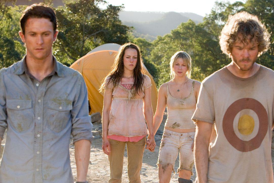 Die erste Begeisterung über den spontanen Urwaldtrip ist bei (v.l.n.r.) Jeff (Jonathan Tucker,), Amy (Jena Malone), Stacy (Laura Ramsey) und Eric (... - Bildquelle: 2008 DreamWorks LLC. All Rights Reserved.l
