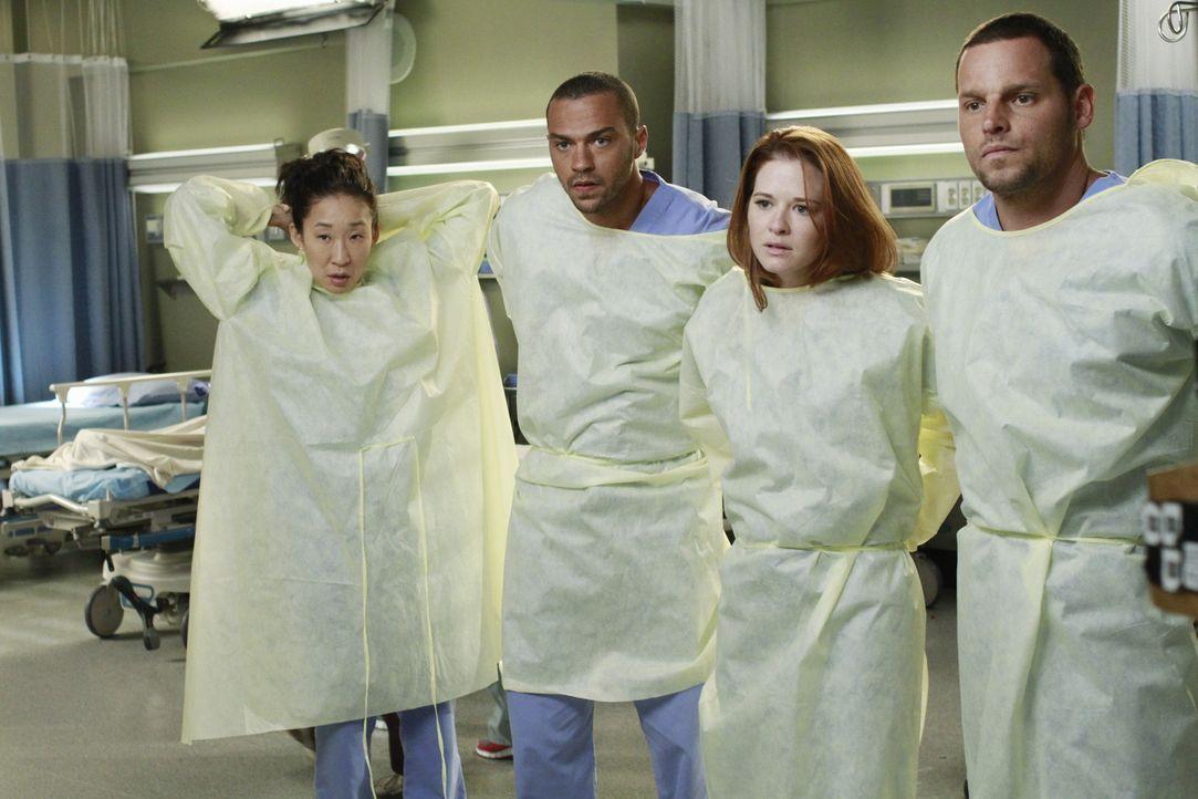Auf Jackson (Jesse Williams, 2.v.l.), April (Sarah Drew, 2.v.r.), Alex (Justin Chambers, r.) und Cristina (Sandra Oh, l.) wartet ein ganz besondere... - Bildquelle: ABC Studios