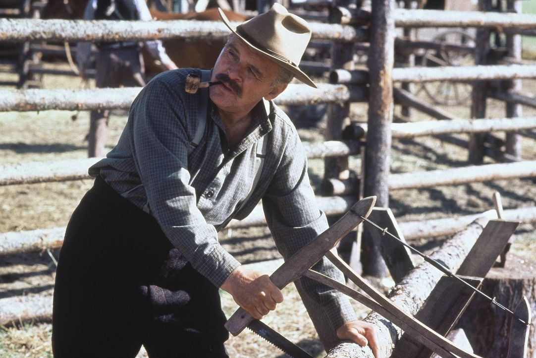 Col. William Ludlow (Anthony Hopkins) nimmt verbittert seinen Abschied aus der Armee und wird Farmer ... - Bildquelle: TriStar Pictures