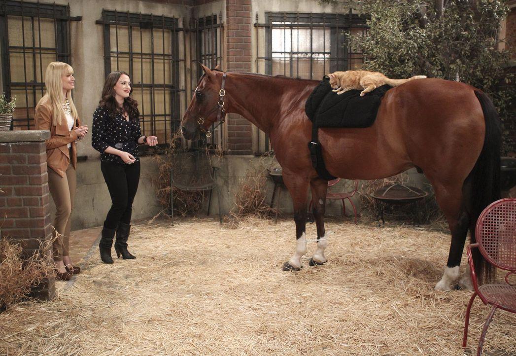 Max (Kat Dennings, r.) und Caroline (Beth Behrs, l.) nehmen sich einer streunenden Katze an und suchen ein neues Zuhause für sie. Doch das ist leich... - Bildquelle: Warner Brothers
