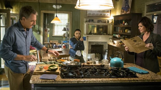 Während Special Agent Pride (Scott Bakula, l.), Sonja (Shalita Grant, M.) und...