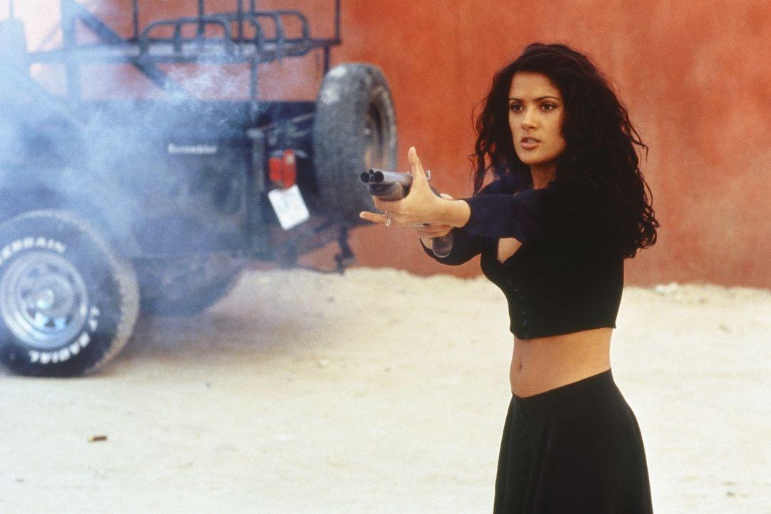 """Zwischen den Blutbädern vertreibt sich """"El Mariachi"""" die Zeit mit der rassigen Buchhändlerin Carolina (Salma Hayek) ... - Bildquelle: Columbia Pictures"""