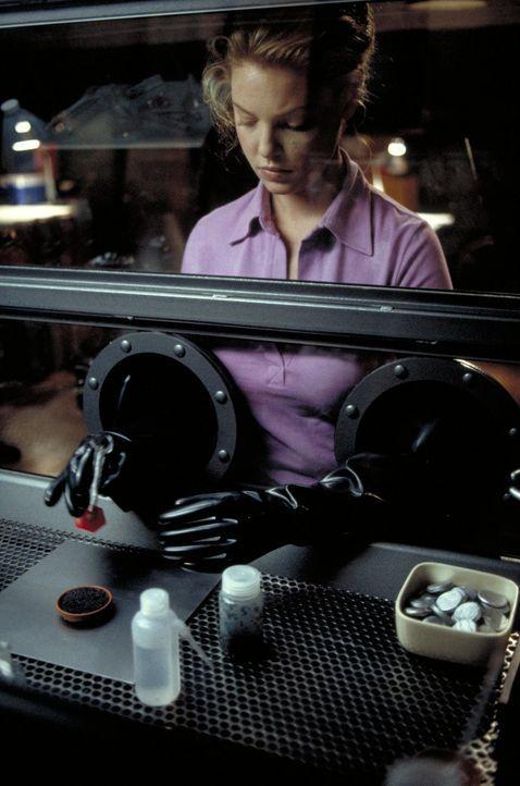 Obwohl schon fast erwachsen, glaubt Studentin Aizy (Katherine Heigl) immer noch daran, die Welt verändern zu können. Zumindest mit Hilfe einer kle... - Bildquelle: 2003 NBC, Inc. All rights reserved.