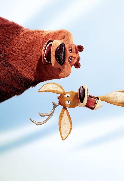 Wer ist hier zahm? Boog (l.) und Elliott (r.) sind die besten Freunde. - Bildquelle: Sony Pictures Television International. All Rights Reserved.