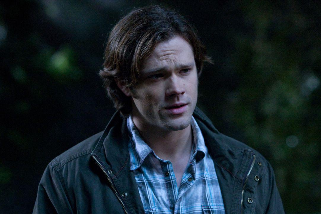 Trifft im Himmel auf alte Bekannte: Sam (Jared Padalecki) ... - Bildquelle: Warner Brothers