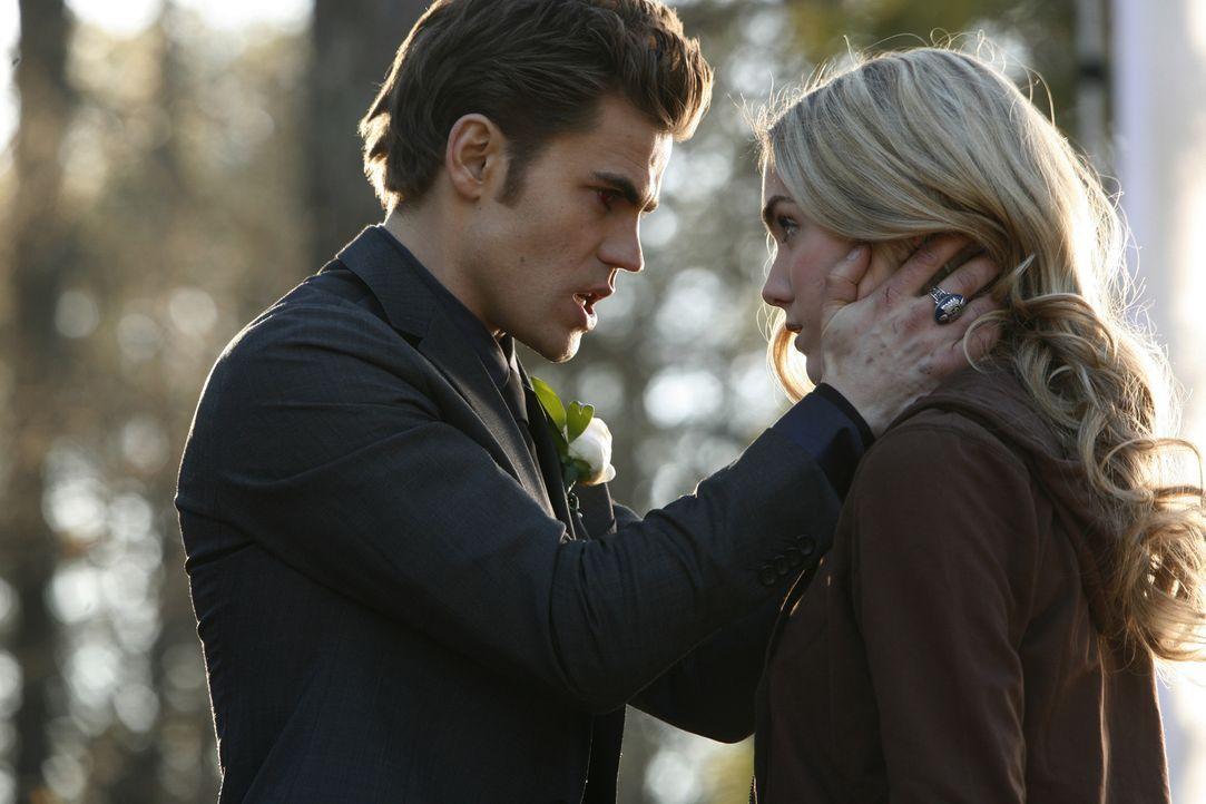 Stefan (Paul Wesley, l.) macht sich Amber (Spencer Locke, r.) mit Hilfe von Manipulation gefügig ... - Bildquelle: Warner Bros. Television