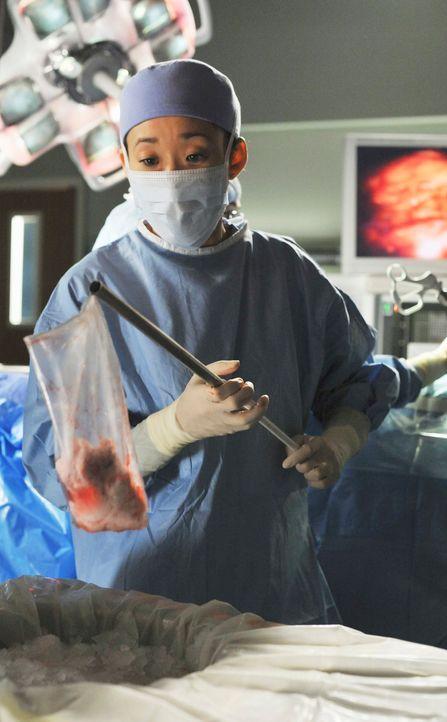 Bereitet eine Niere für die Domino-Operation vor: Cristina (Sandra Oh) ... - Bildquelle: Touchstone Television