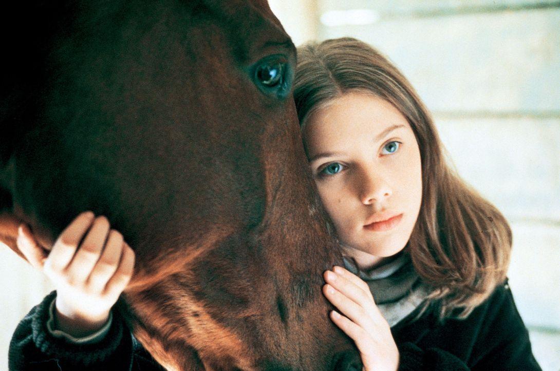 Nur zögerlich lassen Grace (Scarlett Johansson) und ihr Pferd Pilgrim sich auf das Experiment mit dem Pferdeflüsterer ein ... - Bildquelle: Touchstone Pictures