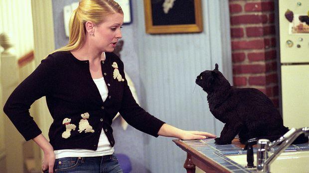 Sabrina (Melissa Joan Hart, l.) führt ein wichtiges Gespräch mit Salem (r.) ....