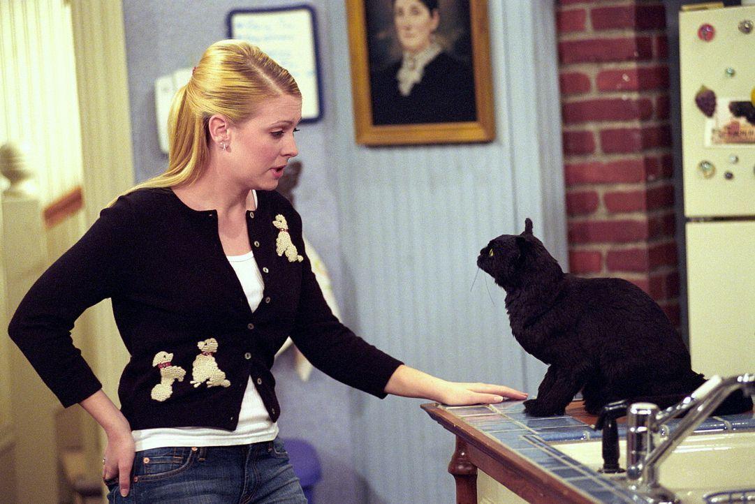 Sabrina (Melissa Joan Hart, l.) führt ein wichtiges Gespräch mit Salem (r.) ... - Bildquelle: Paramount Pictures