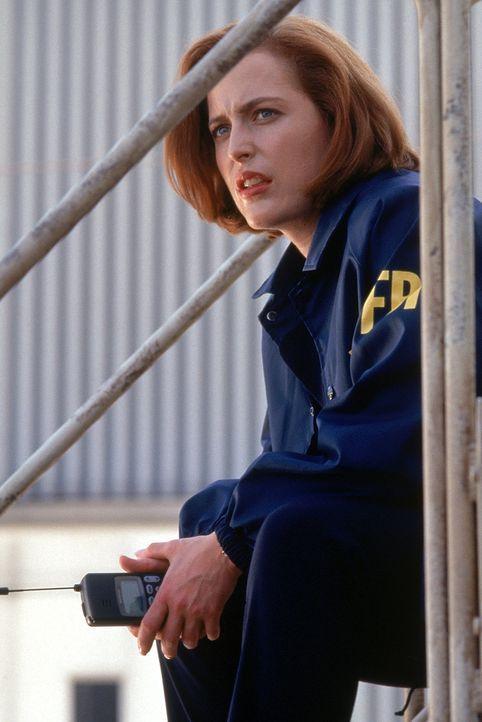 Bei ihren Ermittlungen stellt Scully (Gillian Anderson) Fest, dass sich in dem gesprengten Regierungsgebäude vier Leichen befunden haben, und dass... - Bildquelle: Twentieth Century-Fox Film Corporation