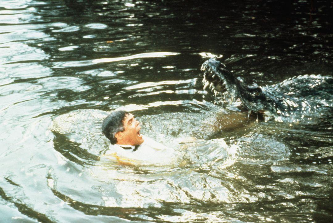 Fischfutter: In den Everglades lernt Capt. Harris (G. W. Bailey) seine Grenzen kennen lernen ... - Bildquelle: Warner Bros.