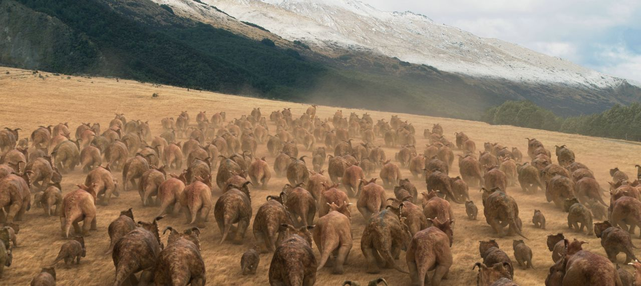 Begeben sich auf die Suche nach einem neuen Zuhause, nachdem sich ihre Welt für immer veränderte: die Pachyrhinosauria ... - Bildquelle: 2013 Constantin Film Verleih GmbH.