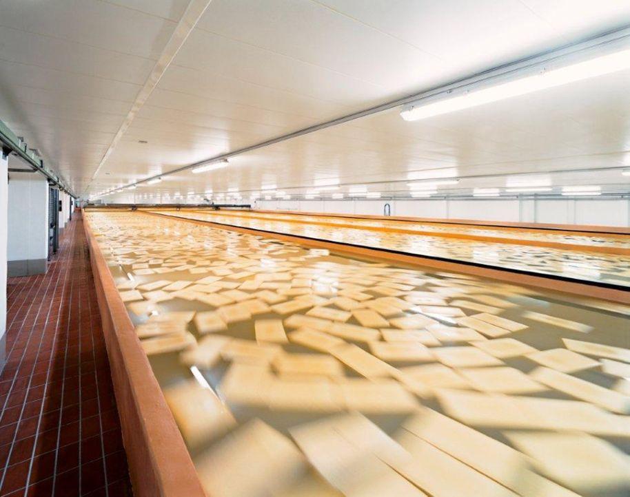 """""""Abenteuer Leben - täglich neu entdecken"""" wirft einen Blick hinter die Kulissen Europas größter Käserei ... - Bildquelle: kabel eins"""
