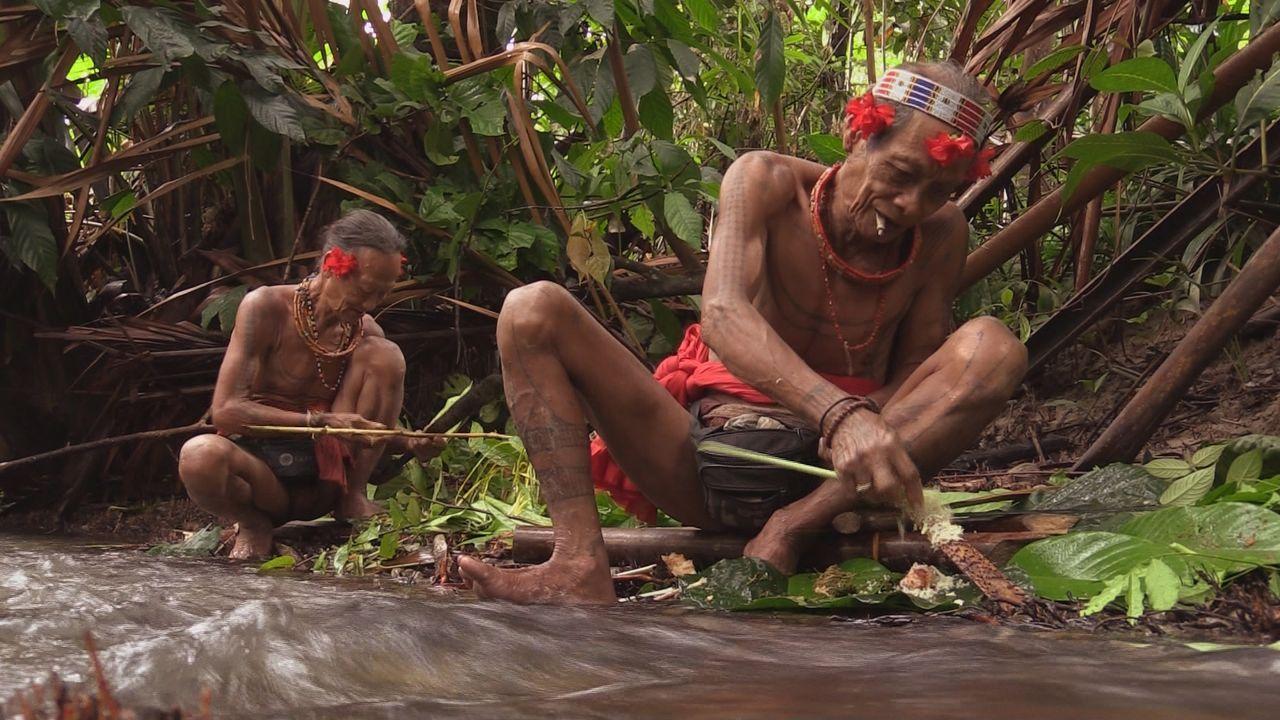 Sumatra 25 - Bildquelle: kabel eins