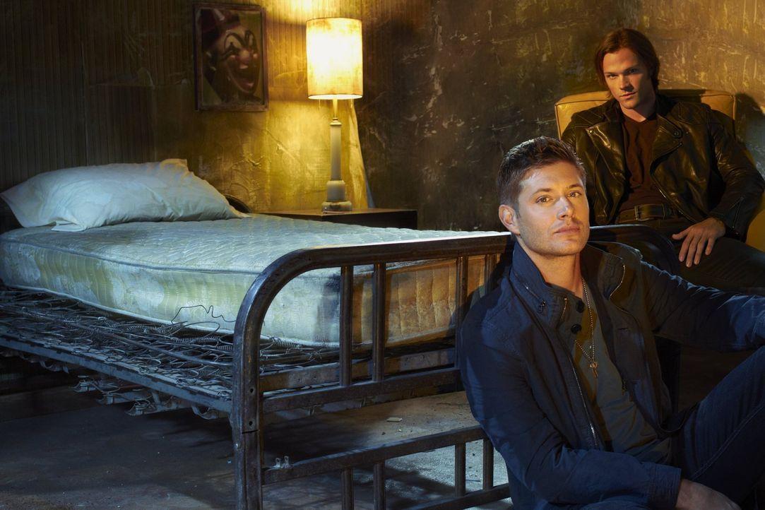 (7. Staffel) - Sie begeben sich auf eine gefährliche Jagd nach dem Übernatürlichen: Sam (Jared Padalecki, r.) und Dean Winchester (Jensen Ackles, l.... - Bildquelle: Warner Bros. Television