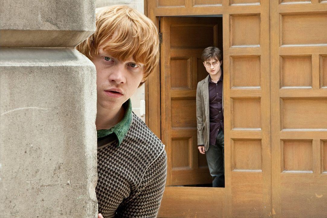 Begeben sich auf die Suche nach den verlorenen und versteckten Horkruxen und müssen dafür sogar in das eingenommene Zaubereiministerium eindringen:... - Bildquelle: 2010 Warner Bros.