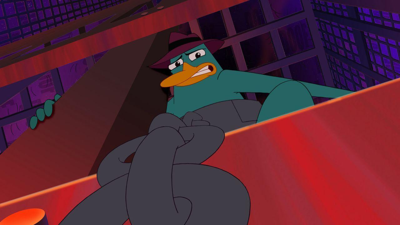 Wird Perry sein Doppelleben als Geheimagent aufdecken, um Phineas und Ferb vor Bösewicht Dr. Doofenschmirtz zu beschützen? - Bildquelle: Disney